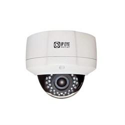 Антивандальная купольная IP камера 2Мп  с облачным сервисом IPEYE-DAL2-SUNR-4-01